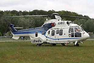 Cougar As.532