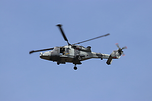 Wildcat (AW159)