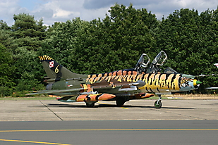 Sukhoi 22