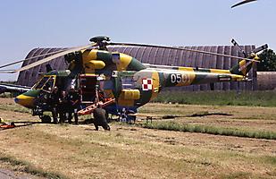 W-3 Sokol / Anakonda